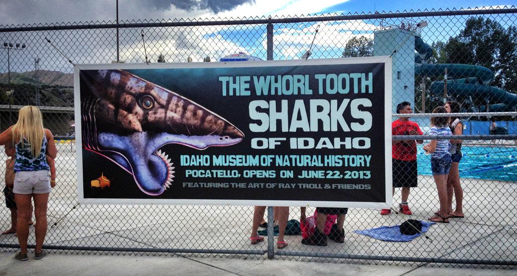 The Whorl Tooth Sharks of Idaho