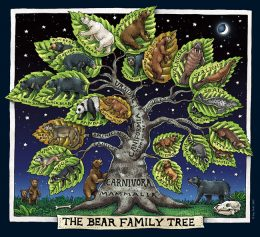 BEAR FAMILY TREE