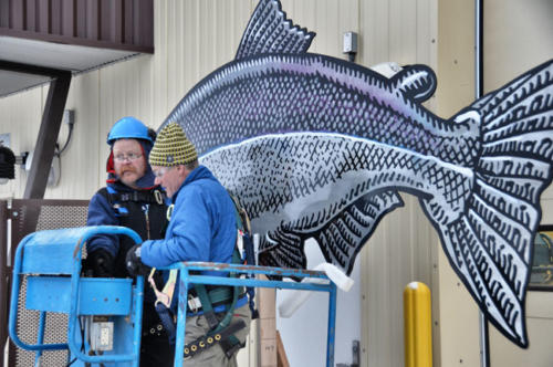 Bolting the salmon to the hatchery building