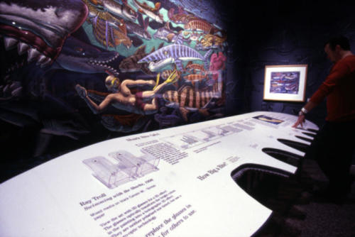 a cool surfboard display with shark bite cut outs,Science Museum of Minnesota , 2001