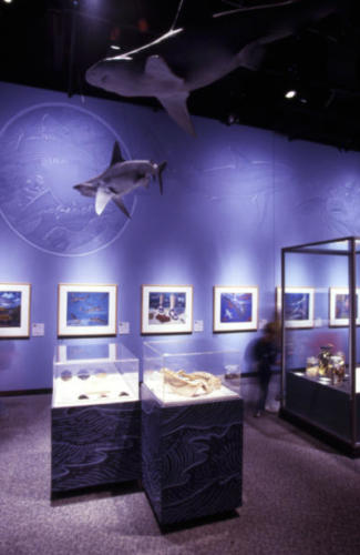 Science Museum of Minnesota , 2001