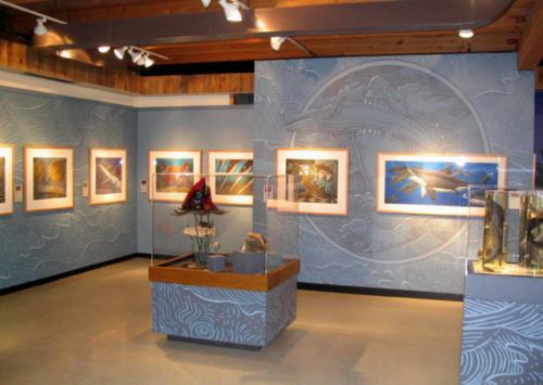Sharkabet at the Alaska State Museum