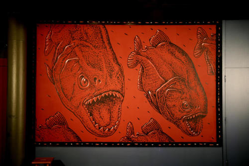 Piranha projection painting, Miami Science Museum