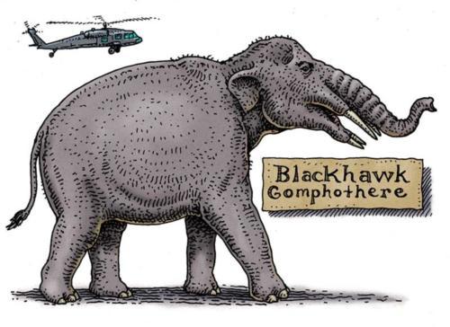 Blackhawk Gomphothere