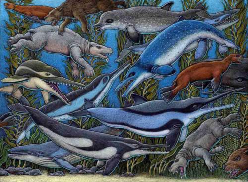 Emlongia (Oligocene/Miocene ocean life)