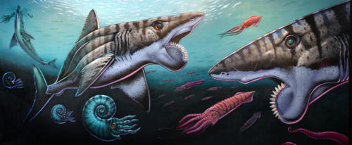 Helicoprion Mural painted with Memo Jauregui