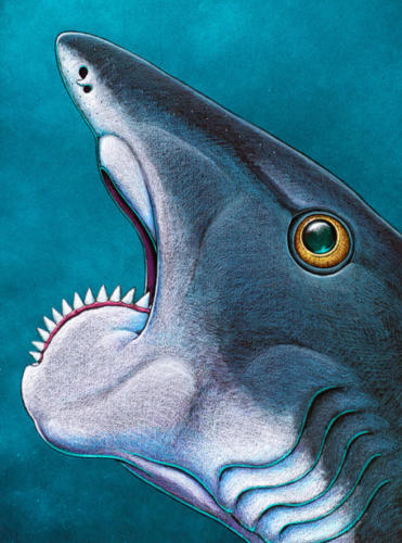 Helicoprion, the Final Version