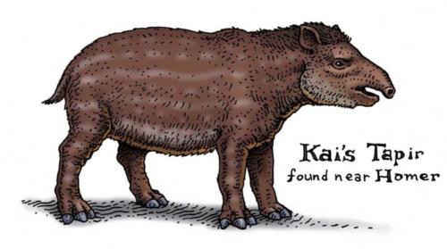 Kai's Tapir