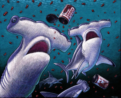 Kidney Headed Shark (AKA Hammerhead)