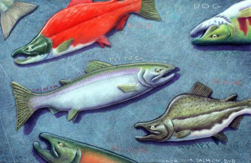 Know Your Salmon Bub