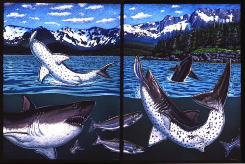Salmon Shark Diptych