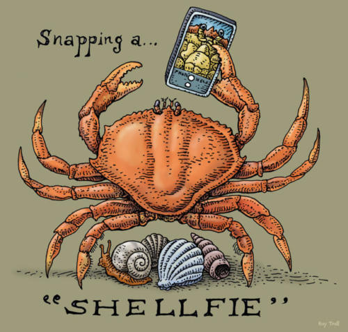 Snapping a Shellfie