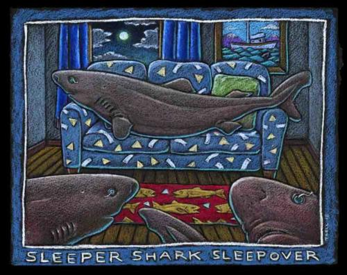 Sleeper Shark Sleepover