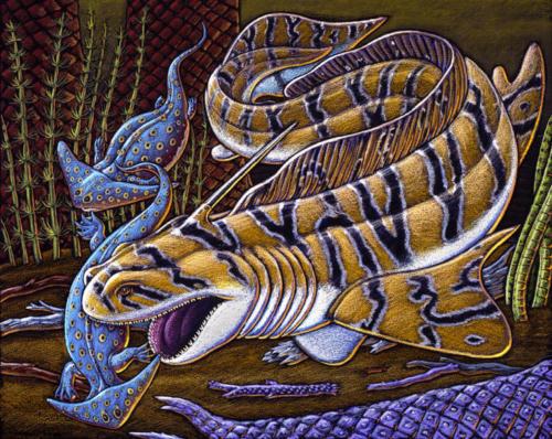 Xenacanth Shark