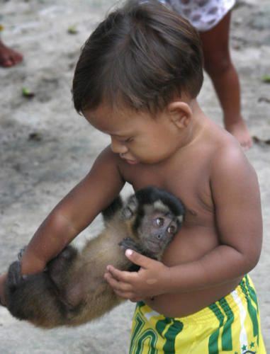 Spider Monkey and child...