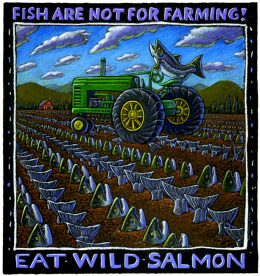 FISH ARE NOT FOR FARMING ART POSTER