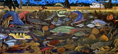 FISHES OF AMAZONIA ART POSTER