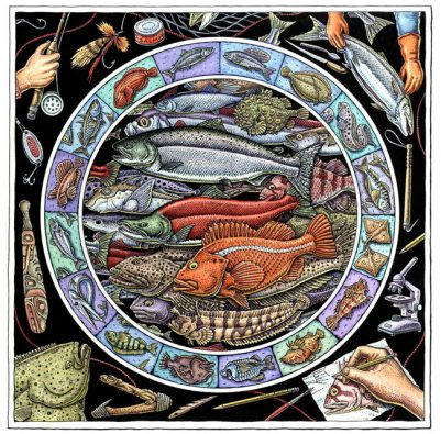 LIVE TO FISH ART POSTER