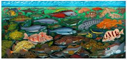 FISHES OF THE SALISH SEA CARD PACK