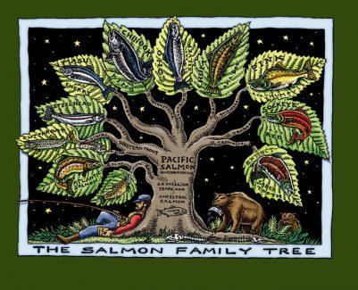 SALMON FAMILY TREE